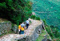 informacion sobre el camino inca
